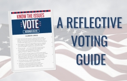 A Reflective Voting Guide